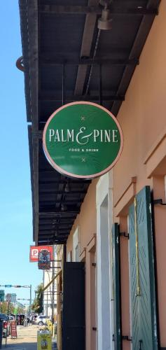 Palm and Pine 6